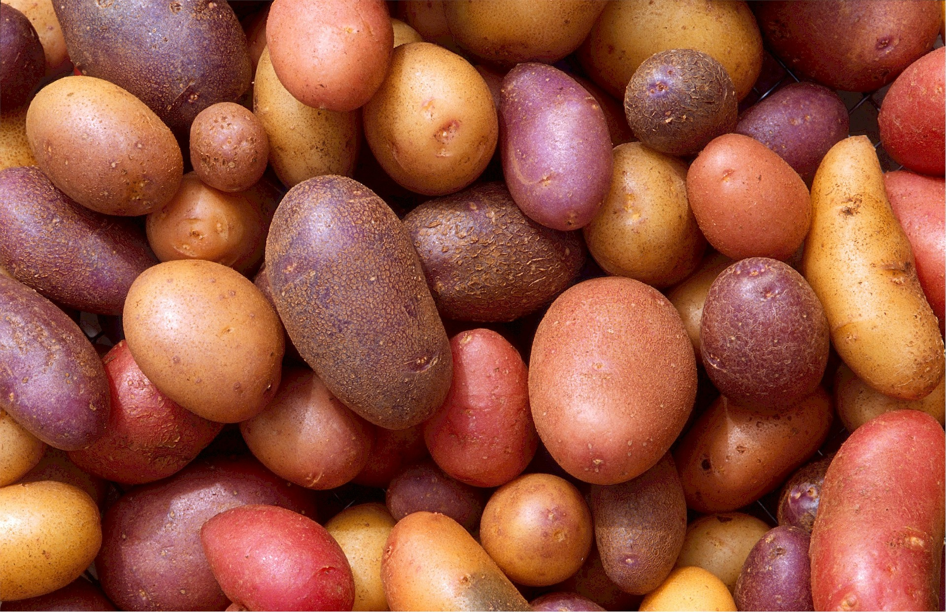 potatoes-522486_1920