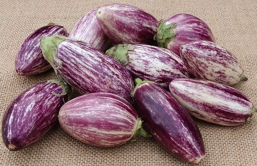 eggplant-pixabay