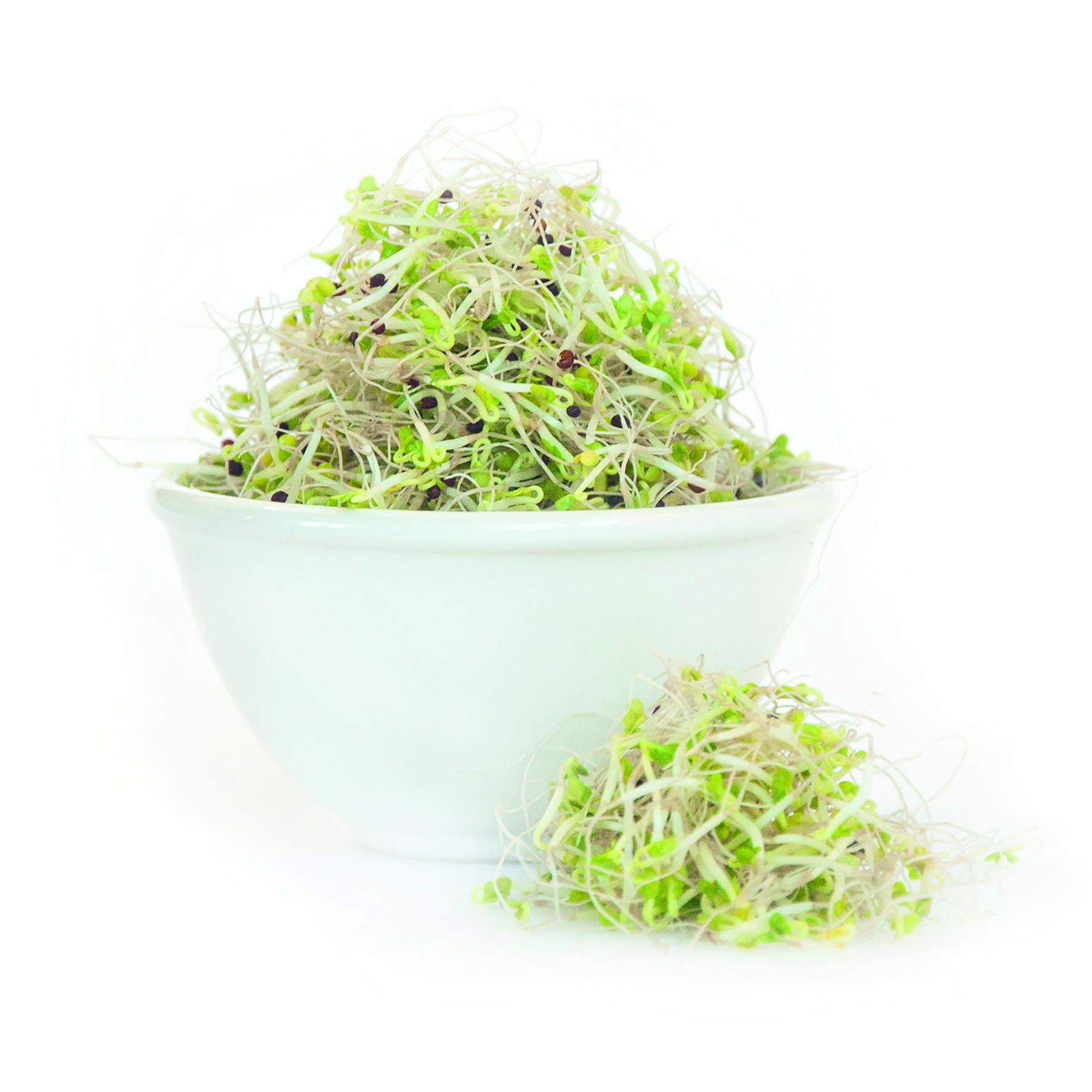 broccoligroddar